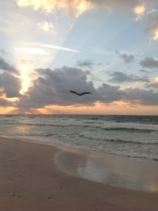 Peaceful Gulf shores morning Photo by Tracey Lewis